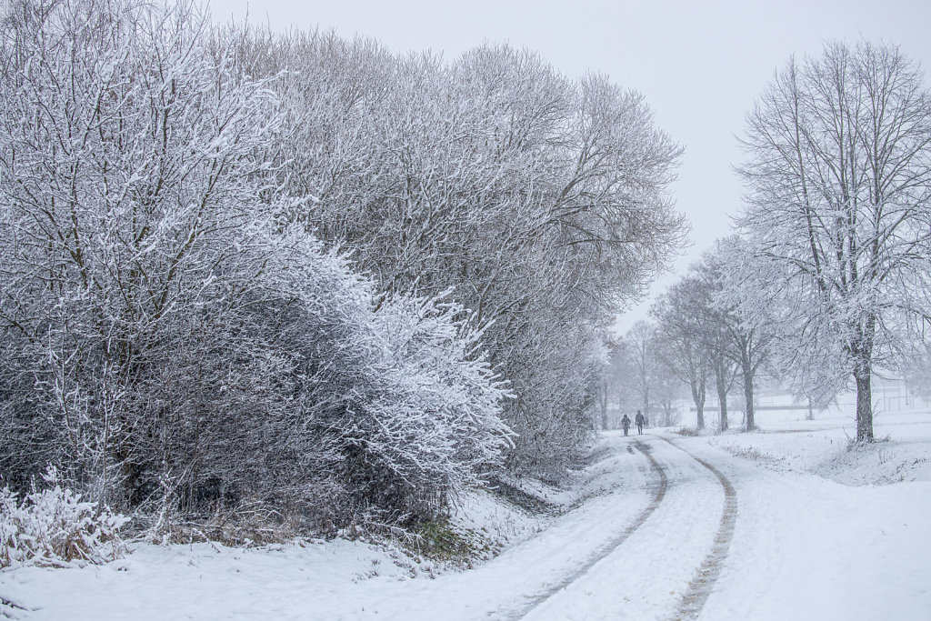Winterwanderung - Eggolsheim
